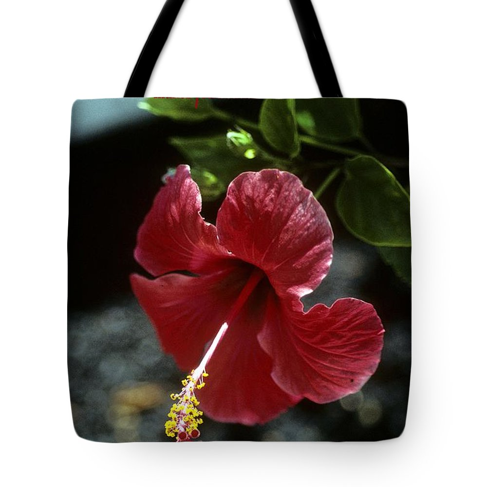 Red Flower Tote Bag featuring the photograph The Way You Think by Gary Wonning
