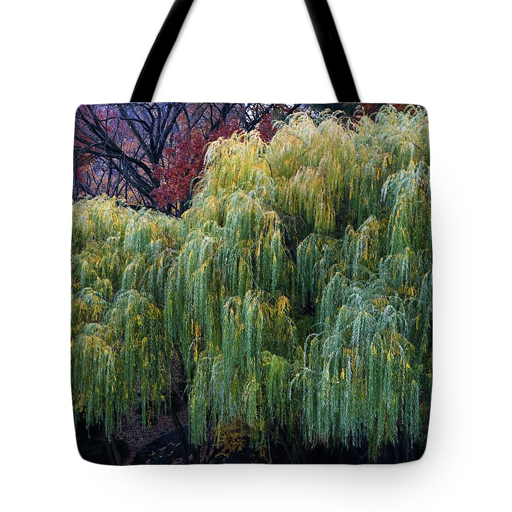 New York City Tote Bag featuring the photograph The Willows Of Central Park by Lorraine Devon Wilke