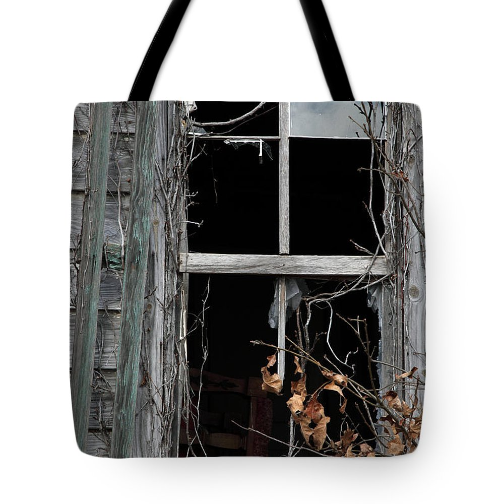 Windows Tote Bag featuring the photograph The Window by Amanda Barcon