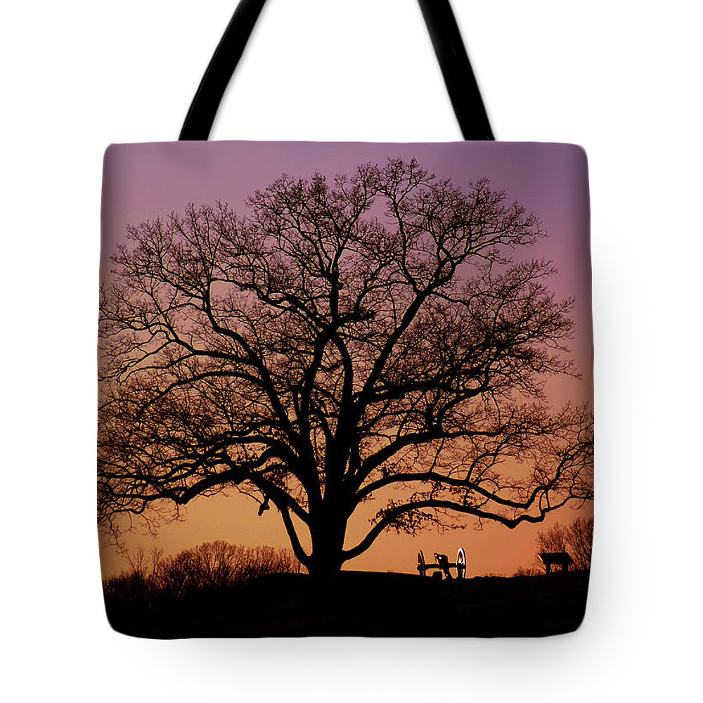 Gettysburg Tote Bag featuring the photograph The Witness by Jen Goellnitz