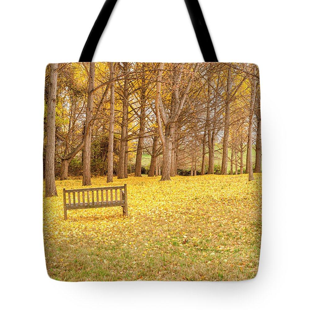 Autumn Tote Bag featuring the photograph The Yellow Leaves Of Fall Carpet The Ground Of A Ginkgo Biloba Grove. Cm3 by Lionel Everett