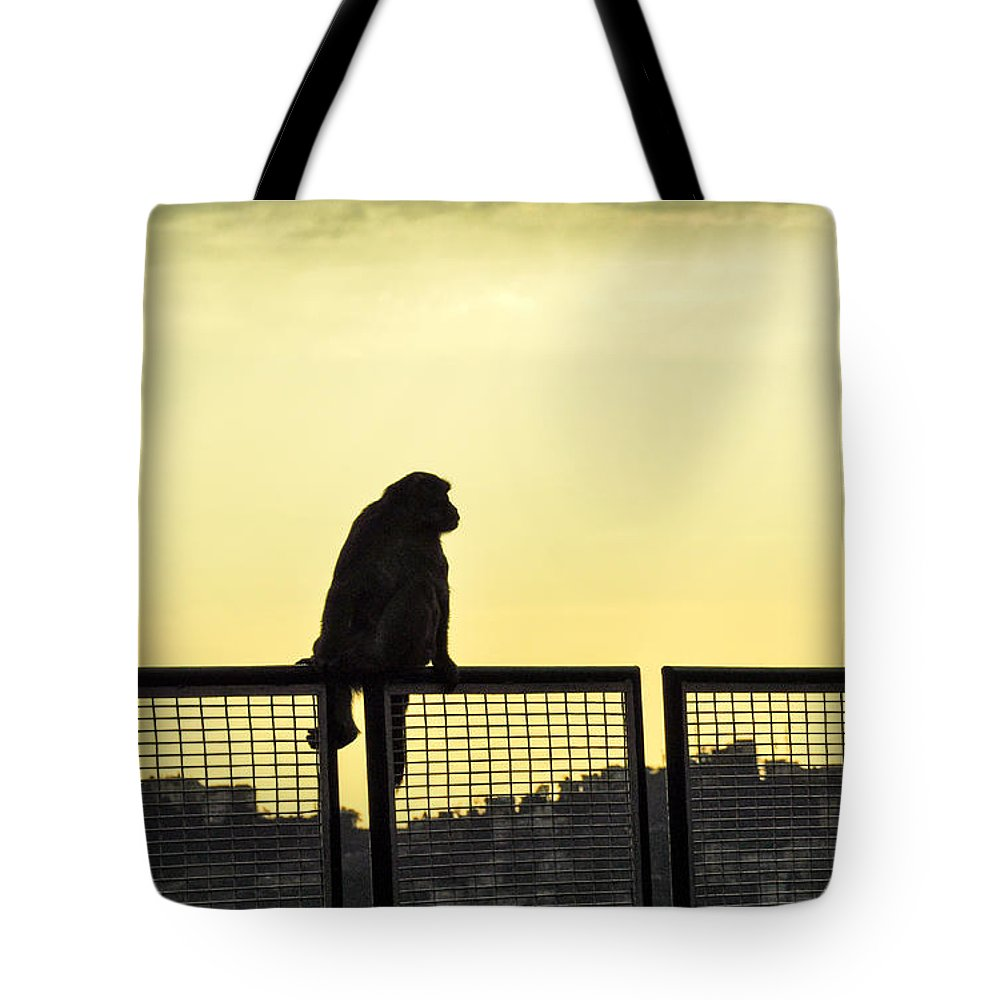 Silhouette Monkey Tote Bag featuring the photograph Thinking Monkey by Freepassenger By Ozzy CG