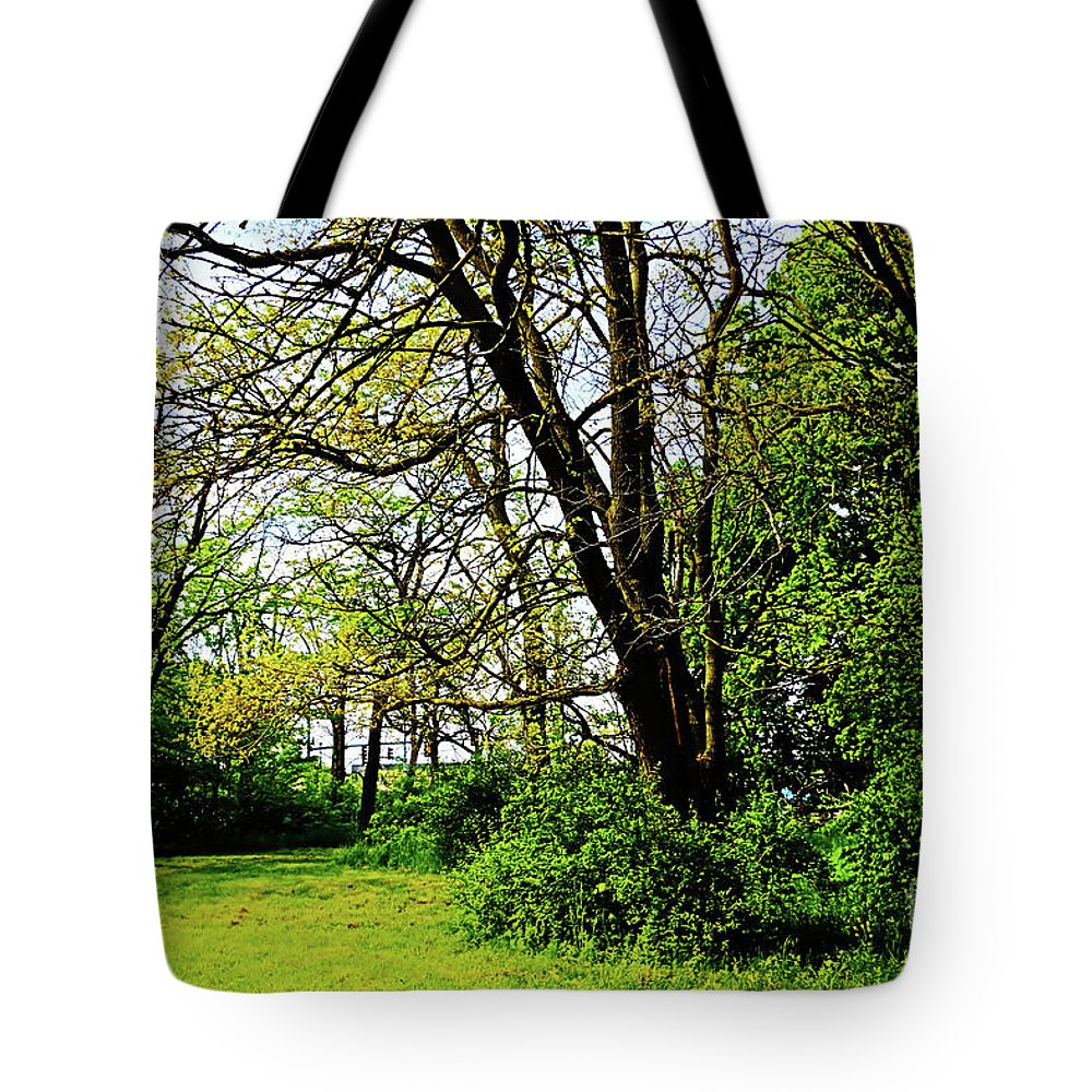 Nature Tote Bag featuring the photograph This Way Out by Don Baker