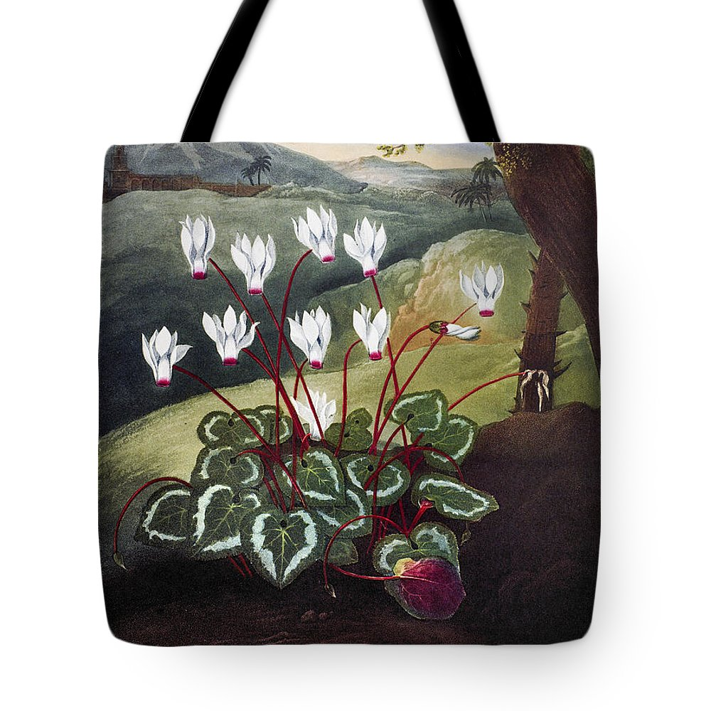 1804 Tote Bag featuring the photograph Thornton: Cyclamen by Granger