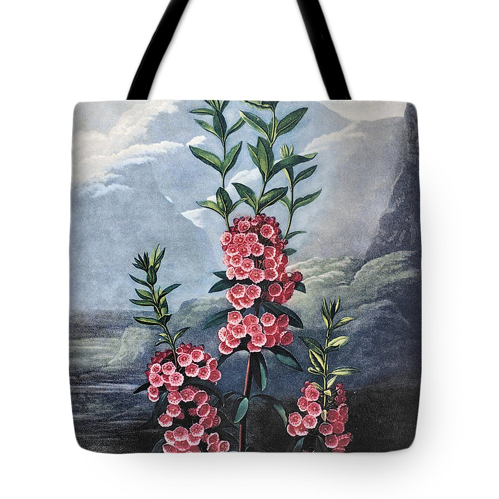 1804 Tote Bag featuring the photograph Thornton: Kalmia by Granger