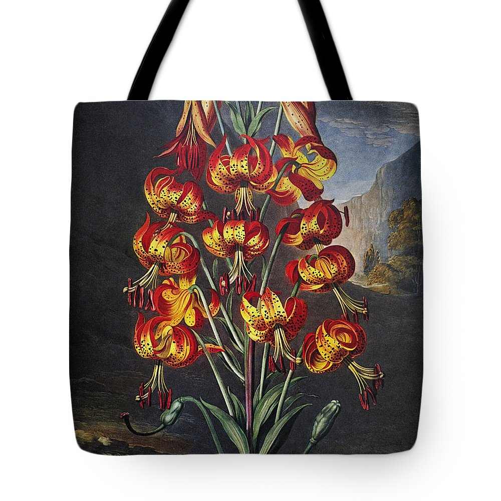 1799 Tote Bag featuring the photograph Thornton: Superb Lily by Granger