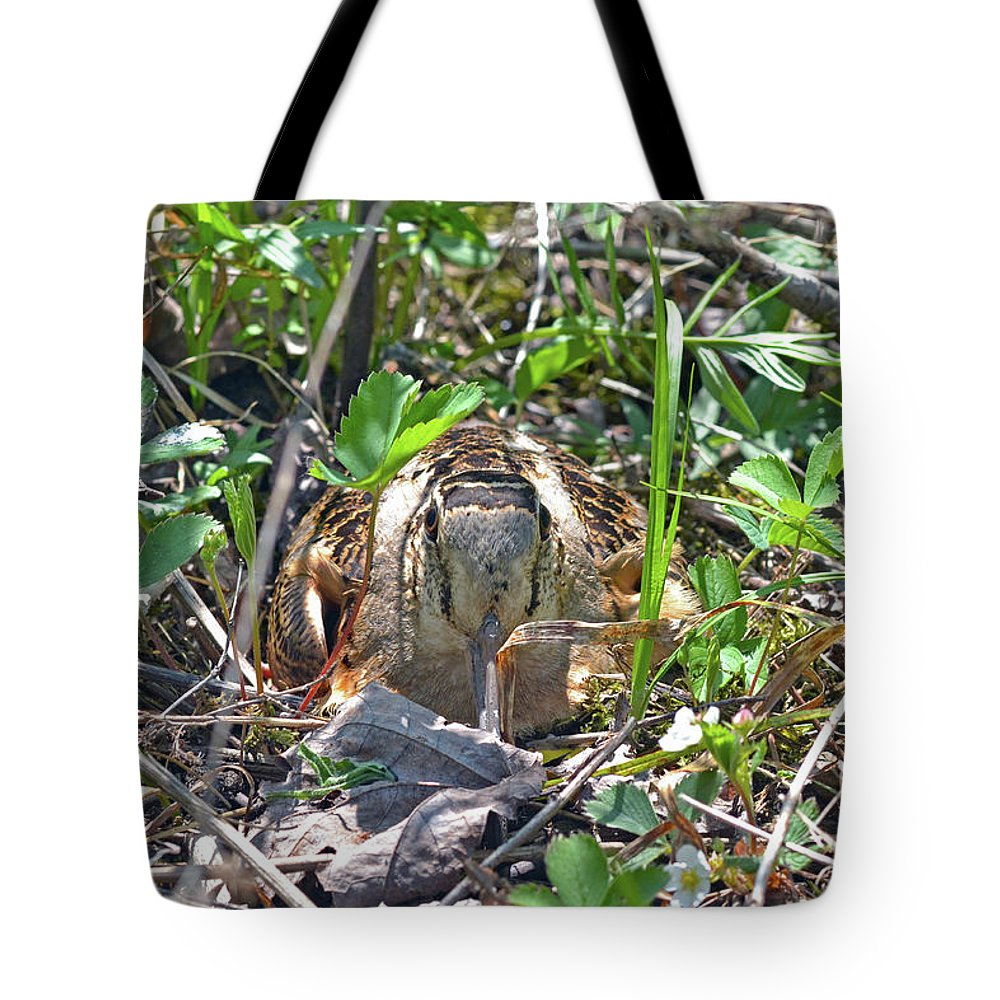 American Woodcock Tote Bag featuring the photograph Those Eyes, Woodcock Eyes by Asbed Iskedjian