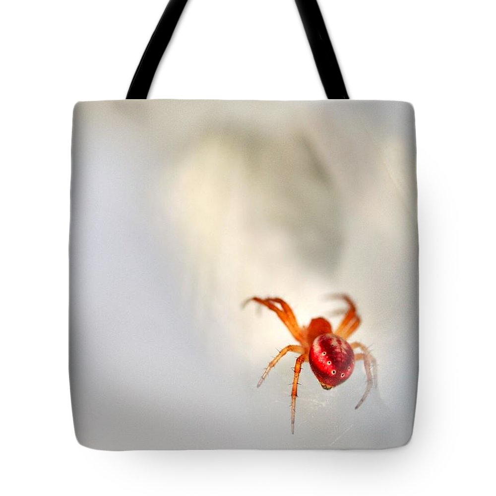 Spider Tote Bag featuring the photograph Thoughts Of White by Mitch Cat