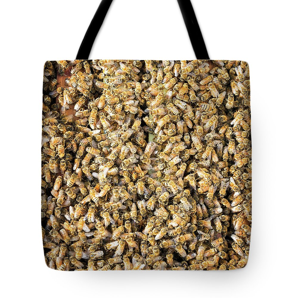 Bee Tote Bag featuring the photograph Thousands of Bees by Jess Kraft
