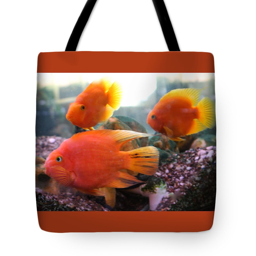 Orange Tote Bag featuring the photograph Three Fish by Kenna Westerman