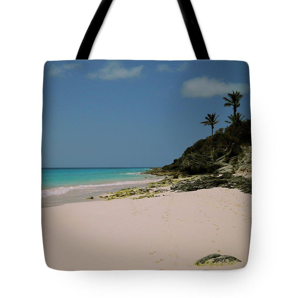 Bermuda Tote Bag featuring the photograph Three Palms by Julia Raddatz