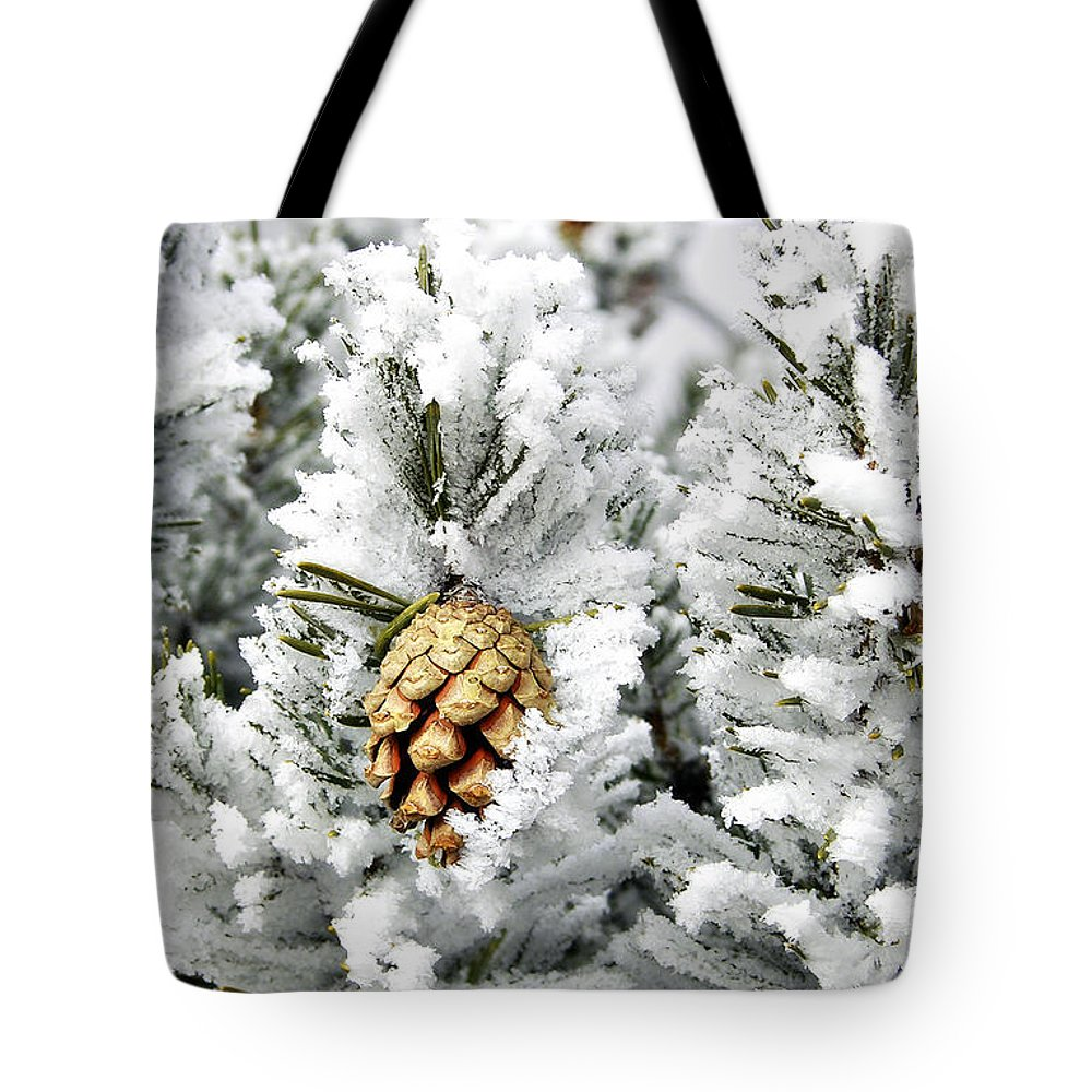 Frosty Tote Bag featuring the photograph Three Pinecones by Marilyn Hunt