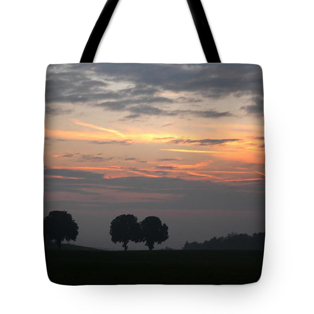 Bavaria Tote Bag featuring the photograph Three Trees Bavaria by Michael Ziegler