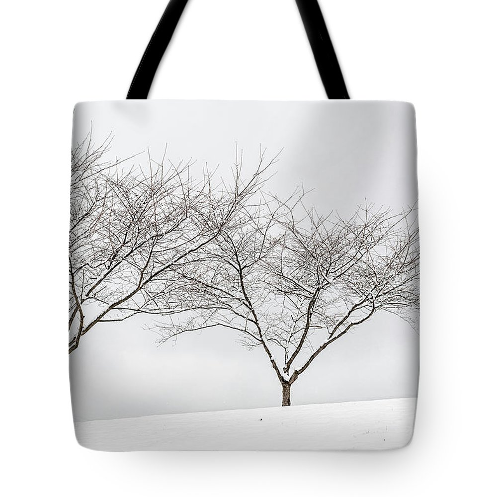 Usa Tote Bag featuring the photograph Three Trees In A Snowstorm by Lionel Everett