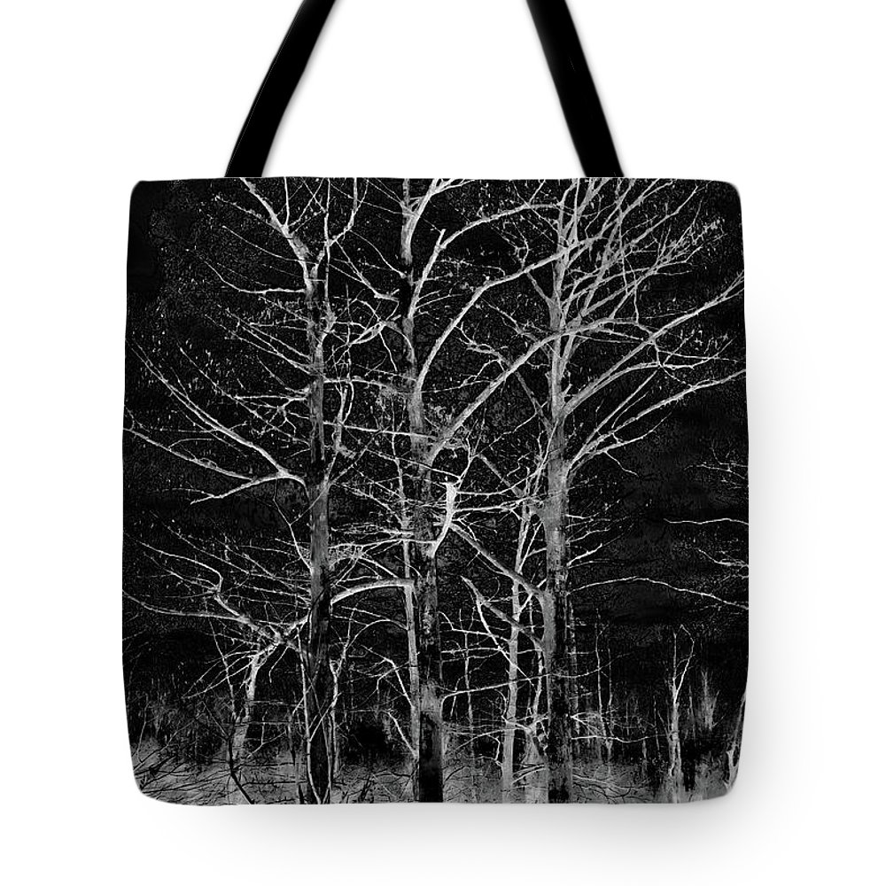 Three Trees Tote Bag featuring the photograph Three Trees In Black And White by Gina O'Brien
