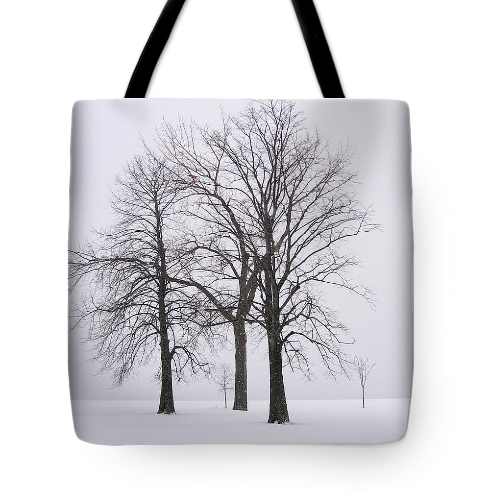 Trees Tote Bag featuring the photograph Three Trees by Laura Kinker