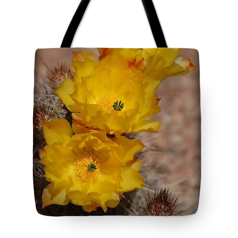 Yellow Flowers Tote Bag featuring the photograph Three Yellow Cactus Flowers by Frank Stallone