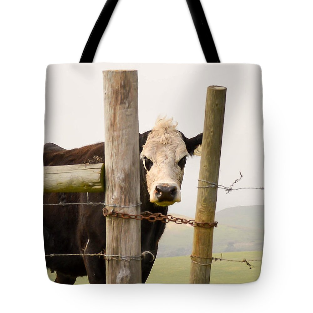 Cow Tote Bag featuring the photograph Threshold Guardian by Maria Perry