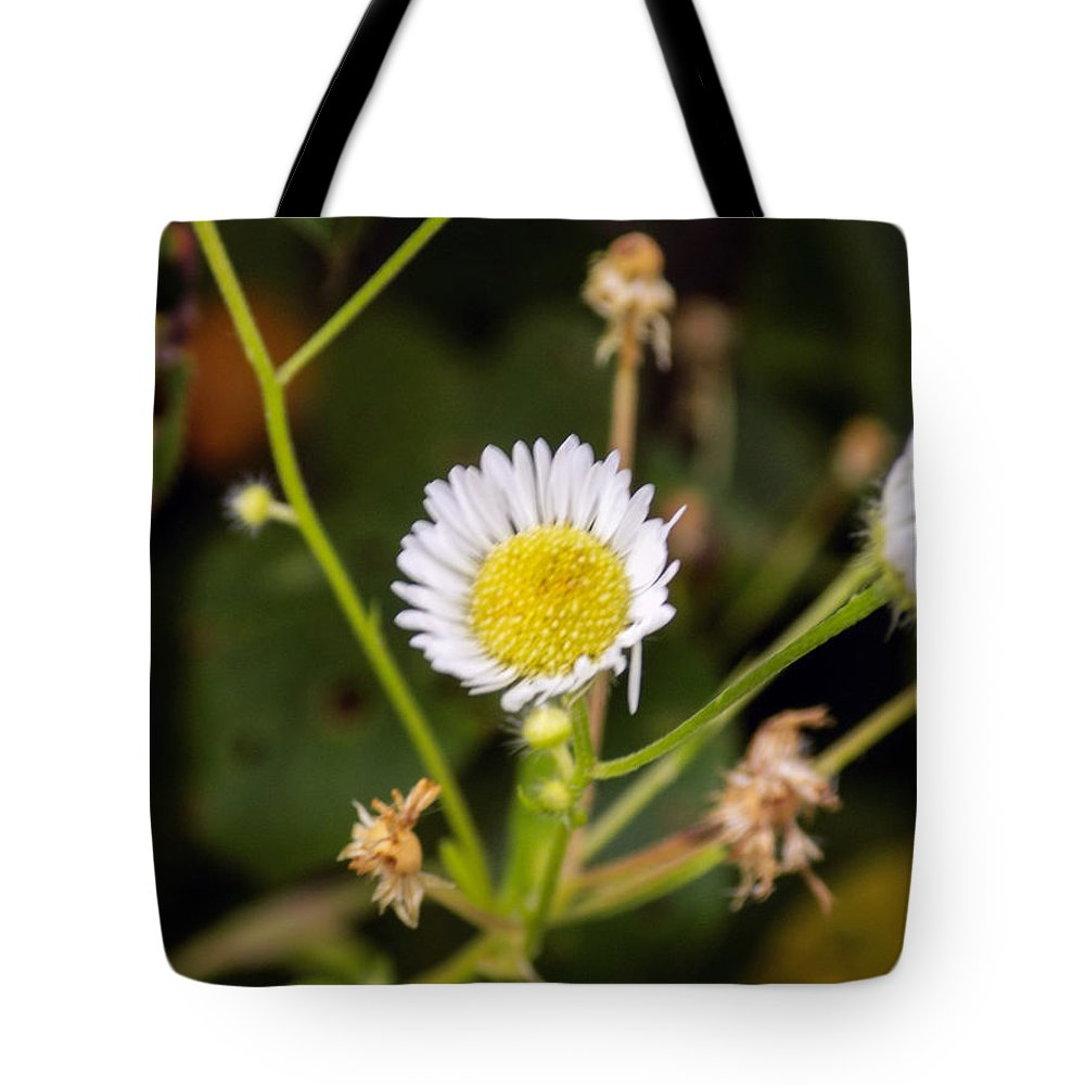 Wildflowers Tote Bag featuring the photograph Thumbnail Sized Pretties by William Tasker