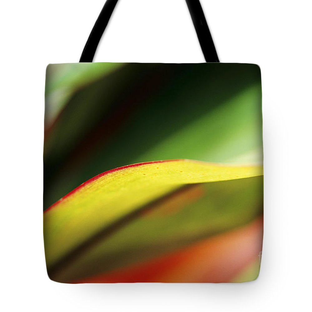 Abstract Tote Bag featuring the photograph Ti-leaf Abstract by William Waterfall - Printscapes