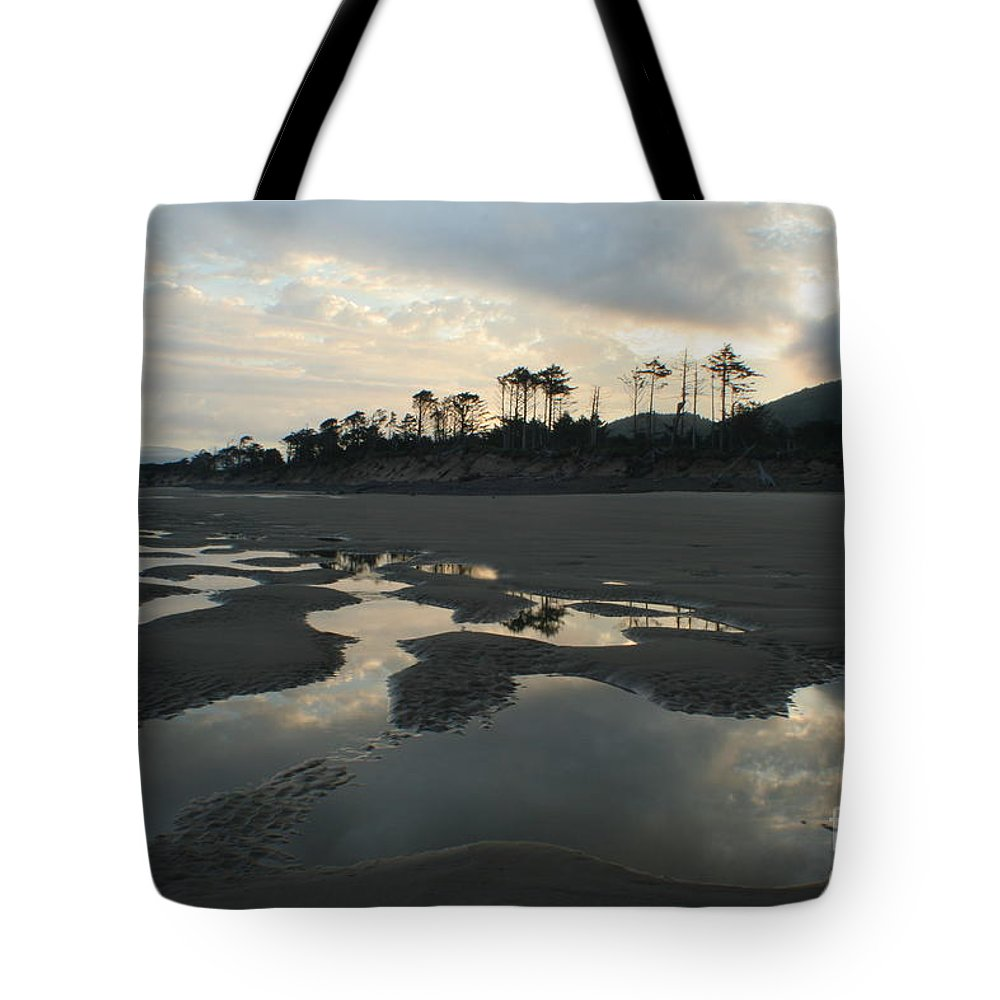 Oregon Tote Bag featuring the photograph Tidepools At Dawn by Idaho Scenic Images Linda Lantzy