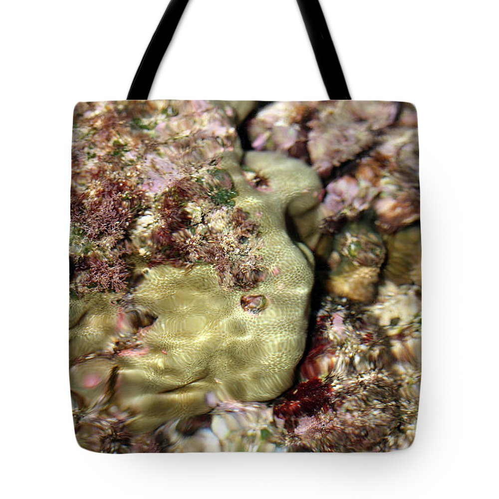 Tidepool Tote Bag featuring the photograph Tidepools Of Poipu IIi by Mary Haber