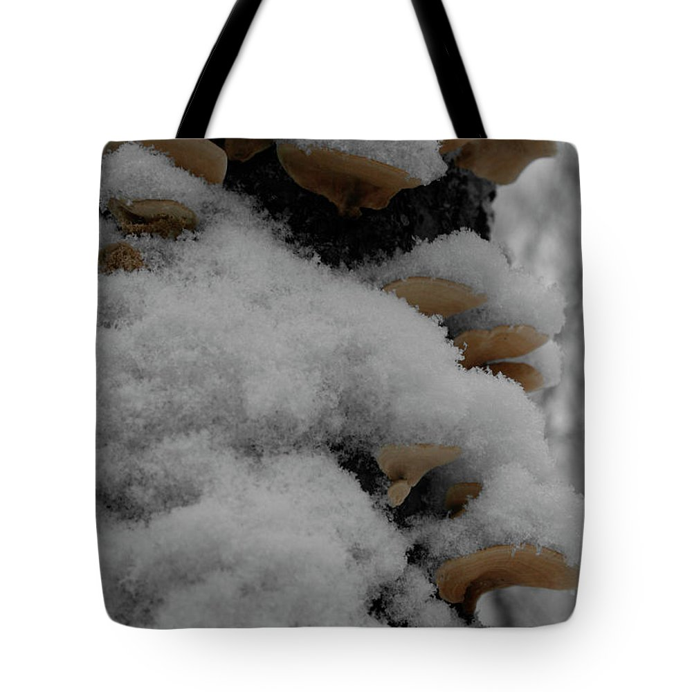 Snow Tote Bag featuring the photograph Tiered Powder by Dylan Punke