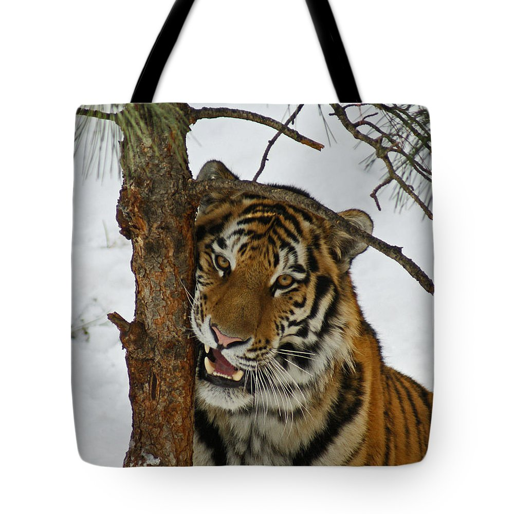 Tiger Tote Bag featuring the photograph Tiger 3 by Ernie Echols