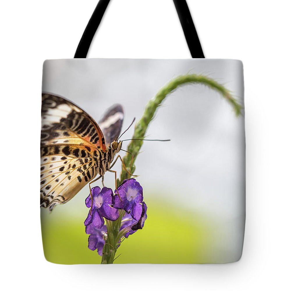 Butterfly Tote Bag featuring the photograph Tiger Butterfly Perched On A Flower by Steven Jones