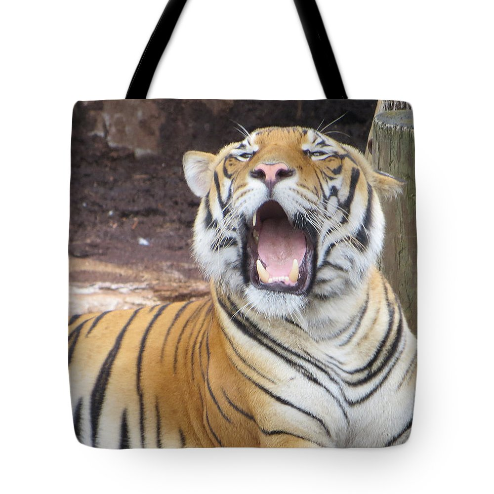 Tiger Tote Bag featuring the photograph Tiger by Miguel Sella
