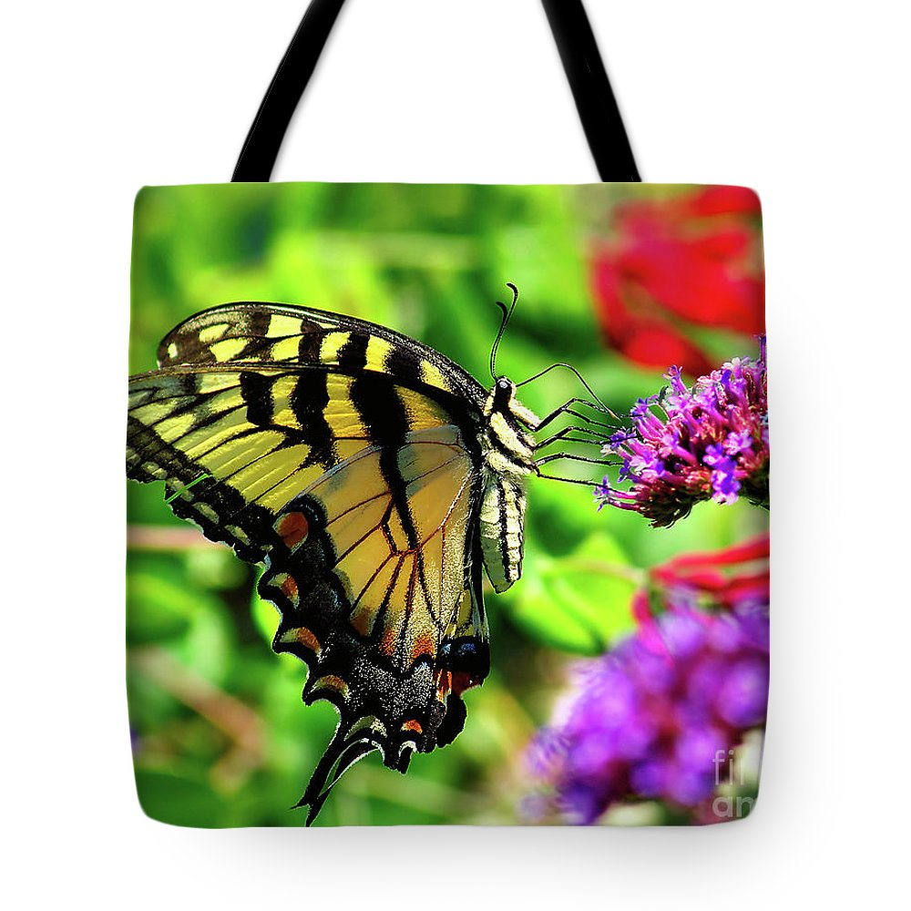 Bug Tote Bag featuring the photograph Tiger Swallowtail Butterfly by Nick Zelinsky