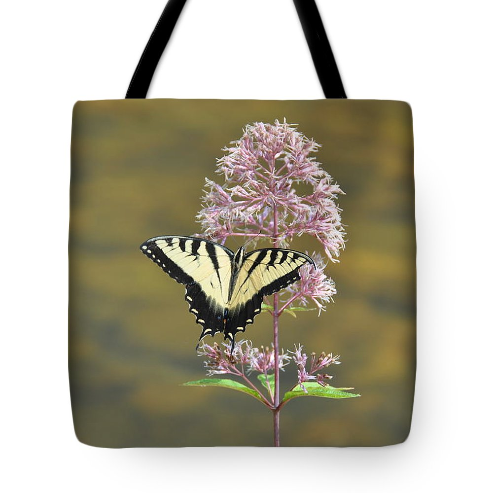 Butterfly Tote Bag featuring the photograph Tiger Swallowtail Butterfly On Common Milkweed 1 by Rich Bodane