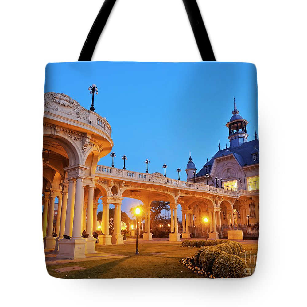 South America Tote Bag featuring the photograph Tigre, Argentina by Karol Kozlowski