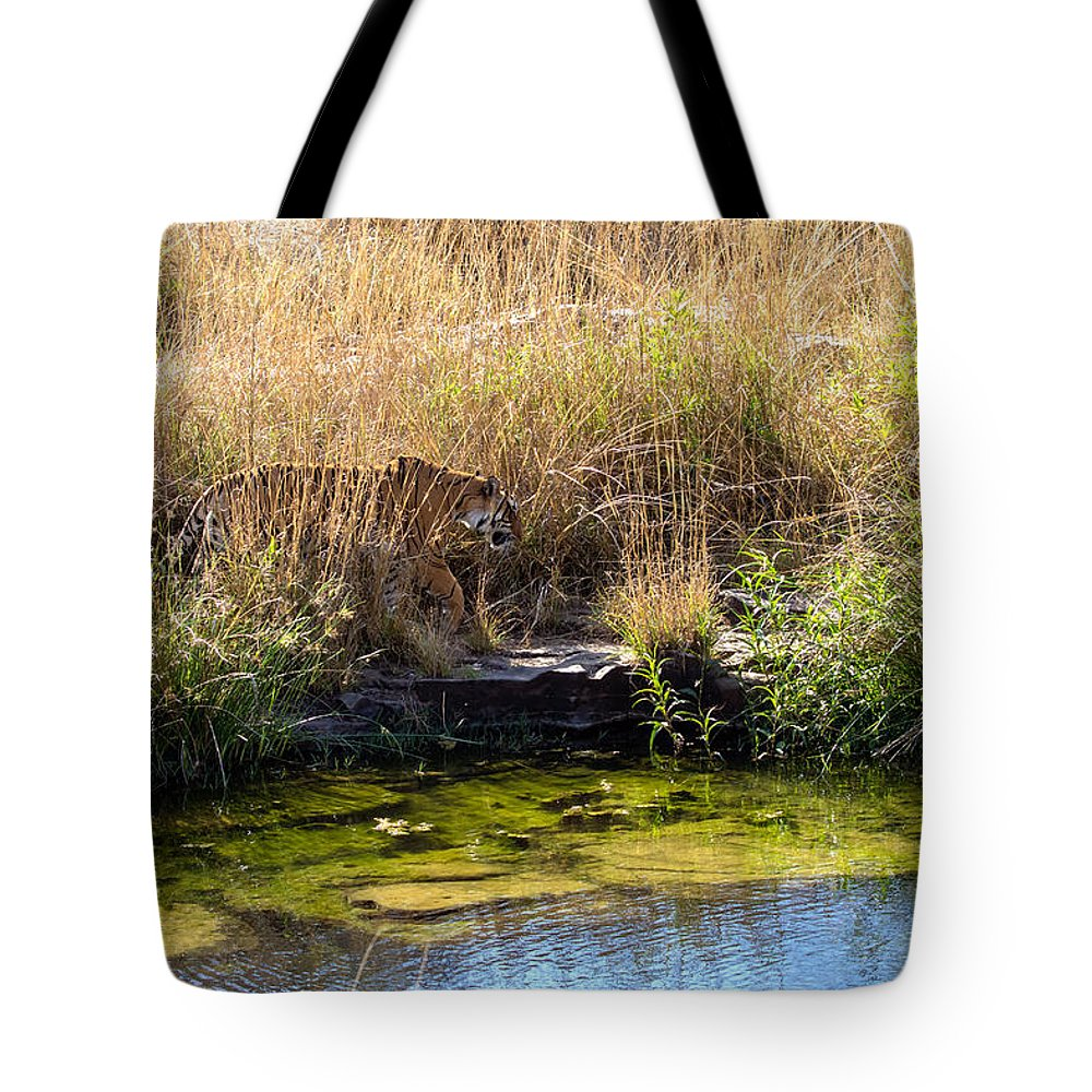 Animal Tote Bag featuring the photograph Tigress By The Stream by Ramabhadran Thirupattur