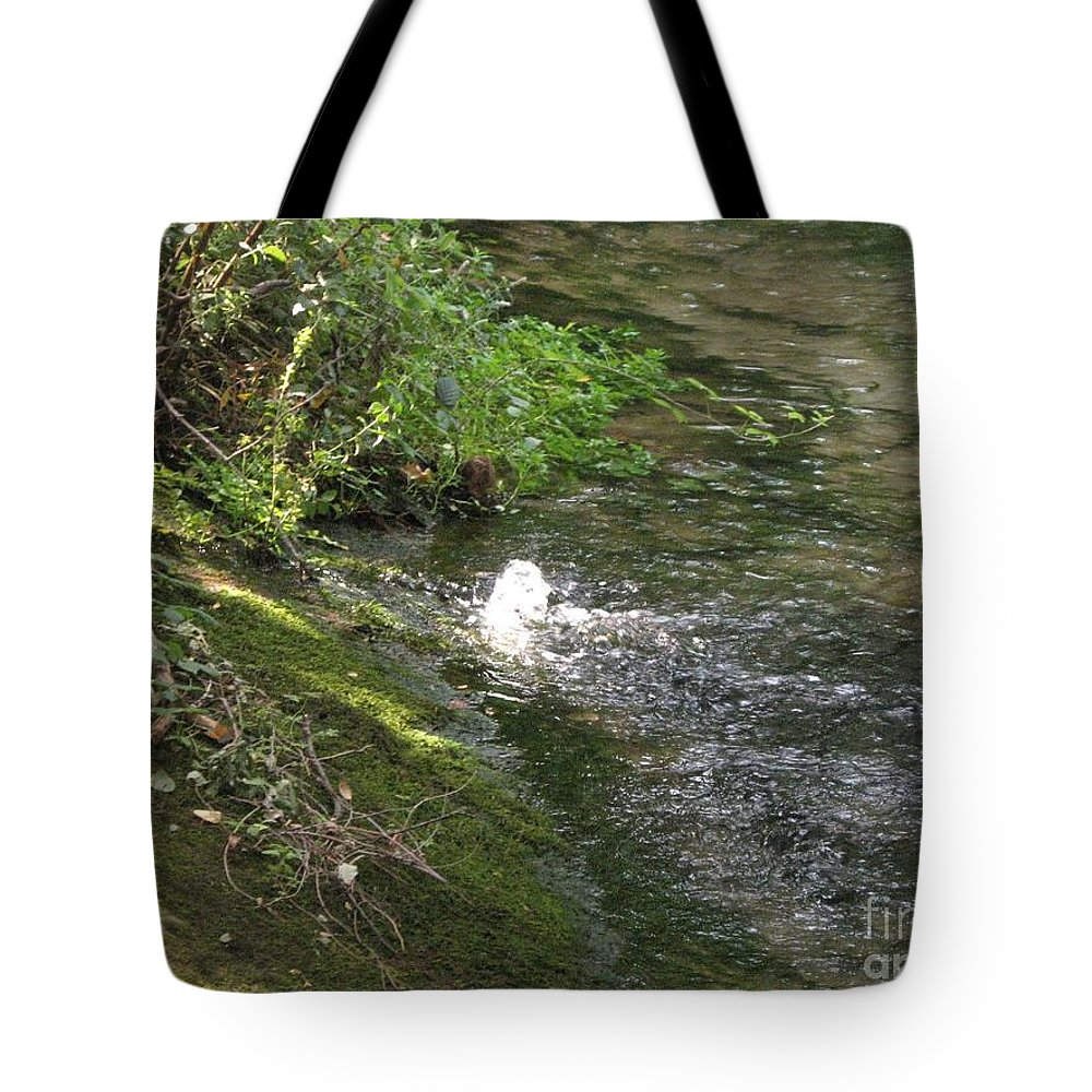River Tote Bag featuring the photograph Timava's Spring I by Dragica Micki Fortuna
