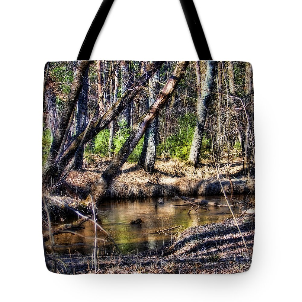 Landscape Tote Bag featuring the photograph Time Stood Still by Lauren Radke