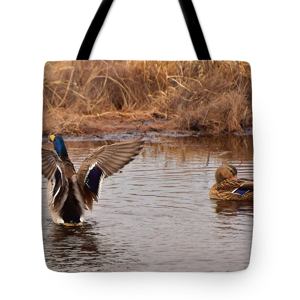 Ann Keisling Tote Bag featuring the photograph Time To Take Flight by Ann Keisling