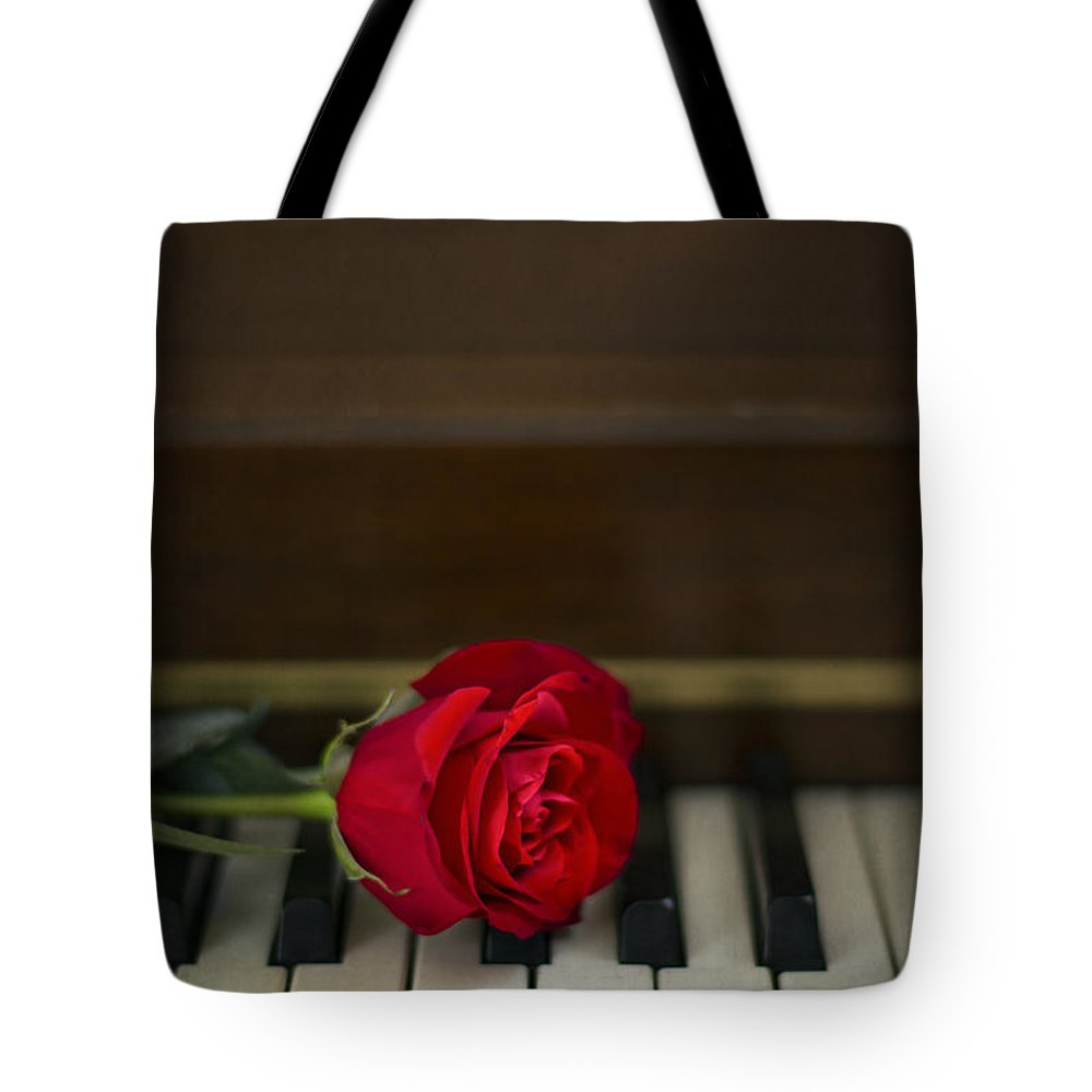 Alone Tote Bag featuring the photograph Timeless Melody by Evelina Kremsdorf