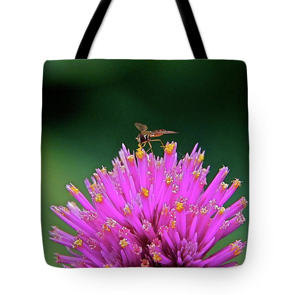 Hoverfly Tote Bag featuring the photograph Tiny Aviator by Byron Varvarigos