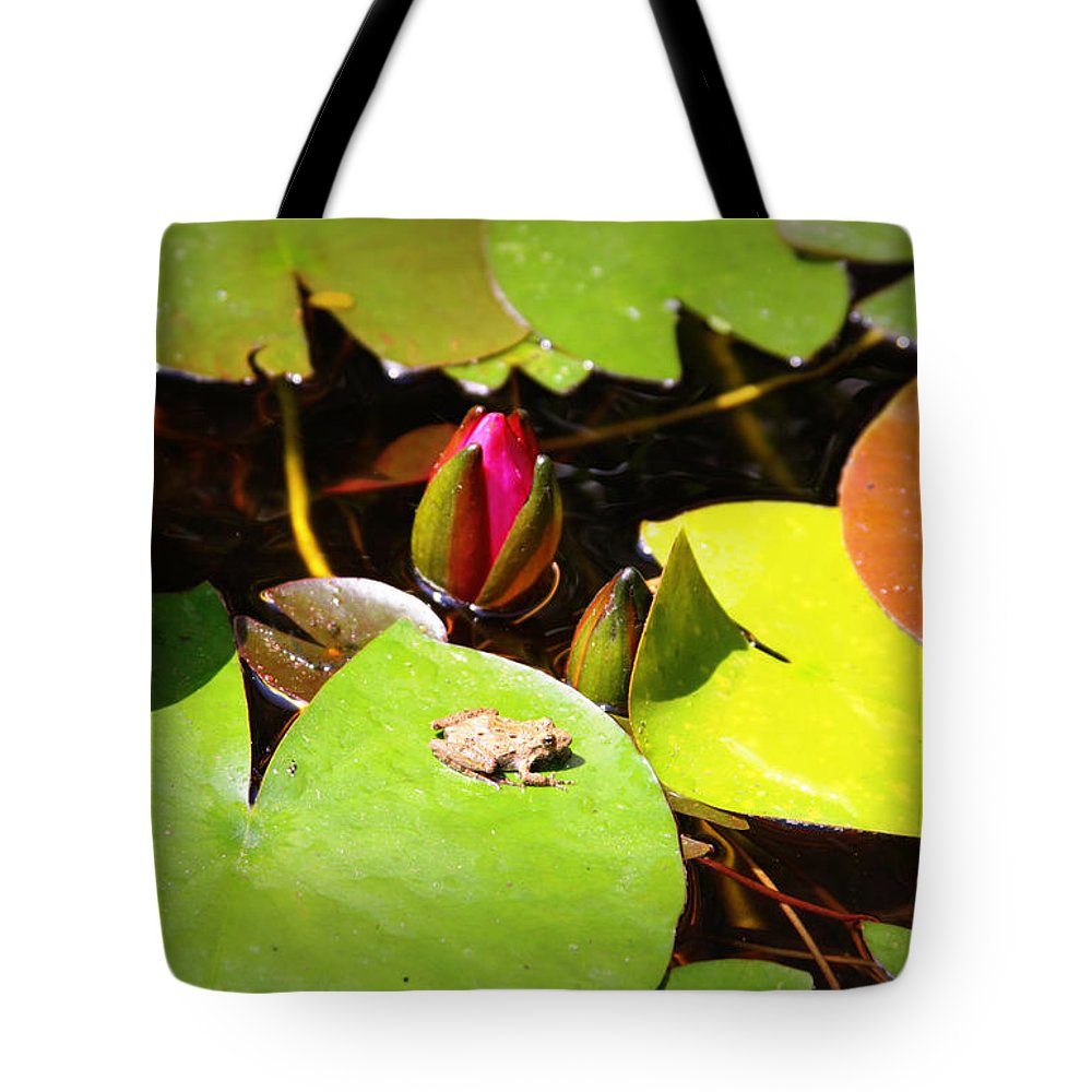 Frog Tote Bag featuring the photograph Tiny Frog by Tina Meador