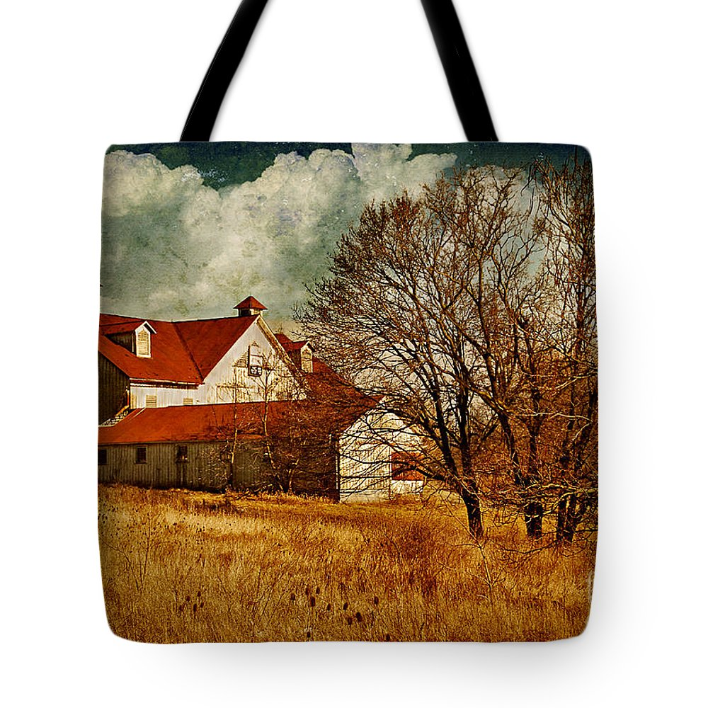 Barns Tote Bag featuring the photograph Tired by Lois Bryan