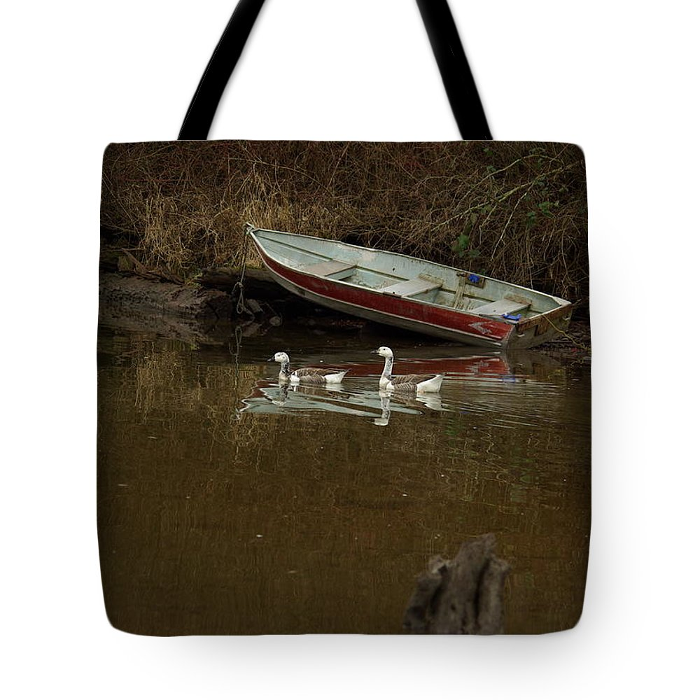 Geese Tote Bag featuring the photograph To Float Or Not To Float by Cindy Johnston