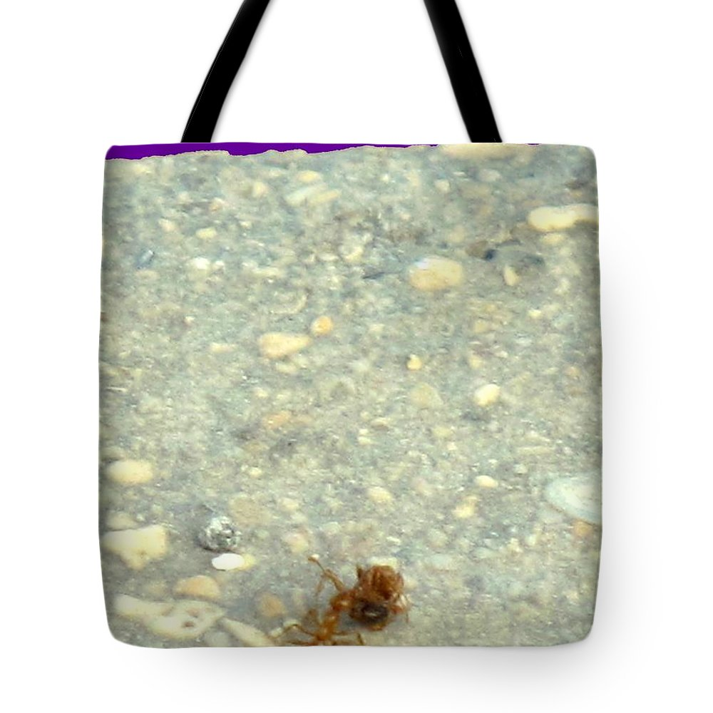 Ant Tote Bag featuring the photograph To The Edge by Ian MacDonald