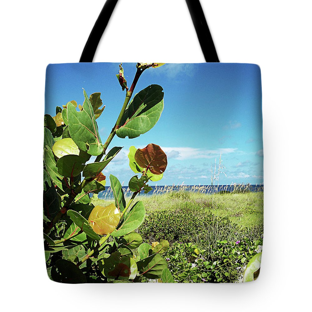 Florida Tote Bag featuring the photograph To The Sky Gp by Chris Andruskiewicz
