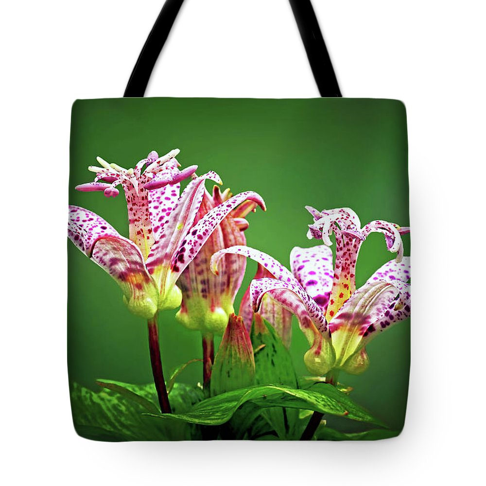 Toad Lilies Tote Bag featuring the photograph Toad Lilies by Carolyn Derstine