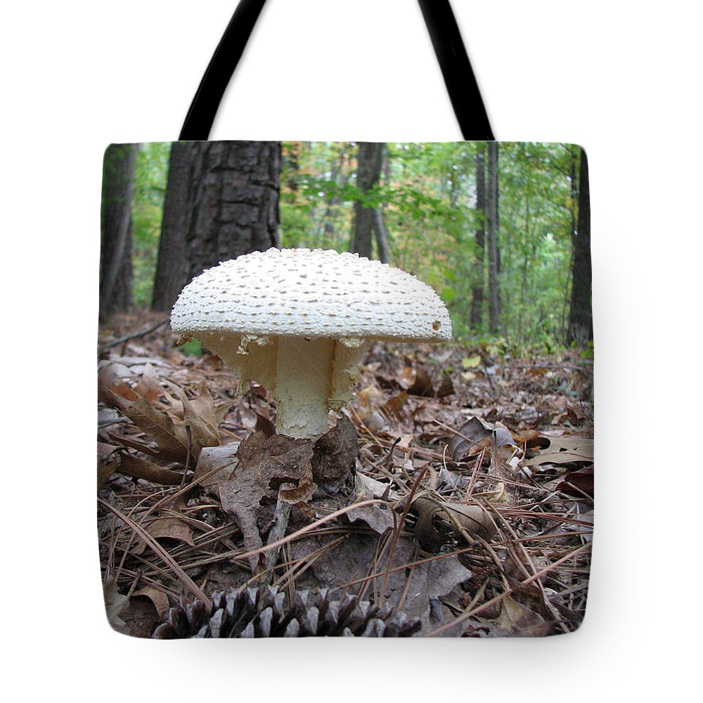 Mushroom Tote Bag featuring the photograph Toad Stool V by Stacey May