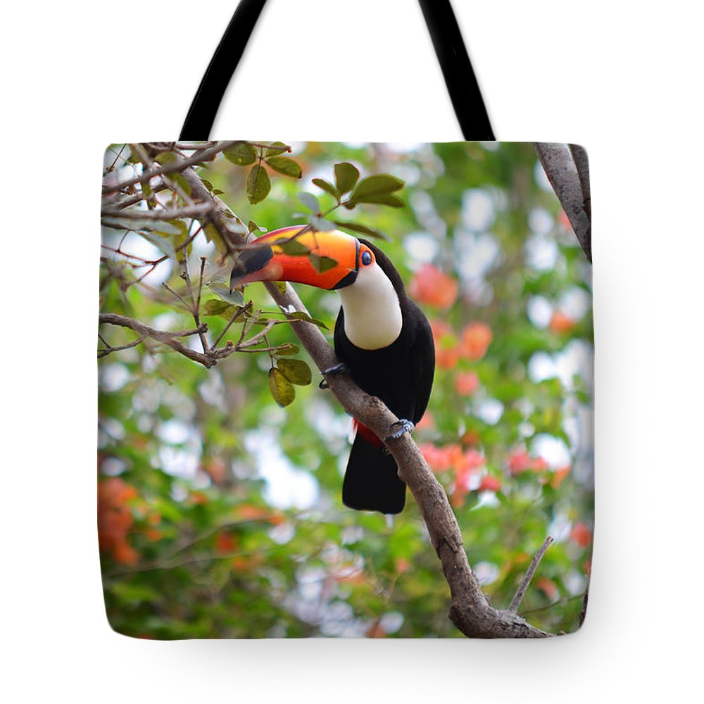 Toucan Tote Bag featuring the photograph Toco Toucan by Ralf Broskvar