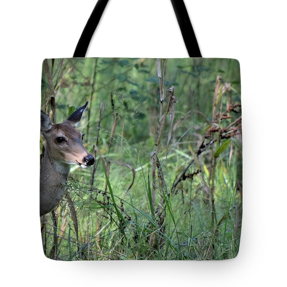 Animal Tote Bag featuring the photograph Todays Art 1992 by Lawrence Hess