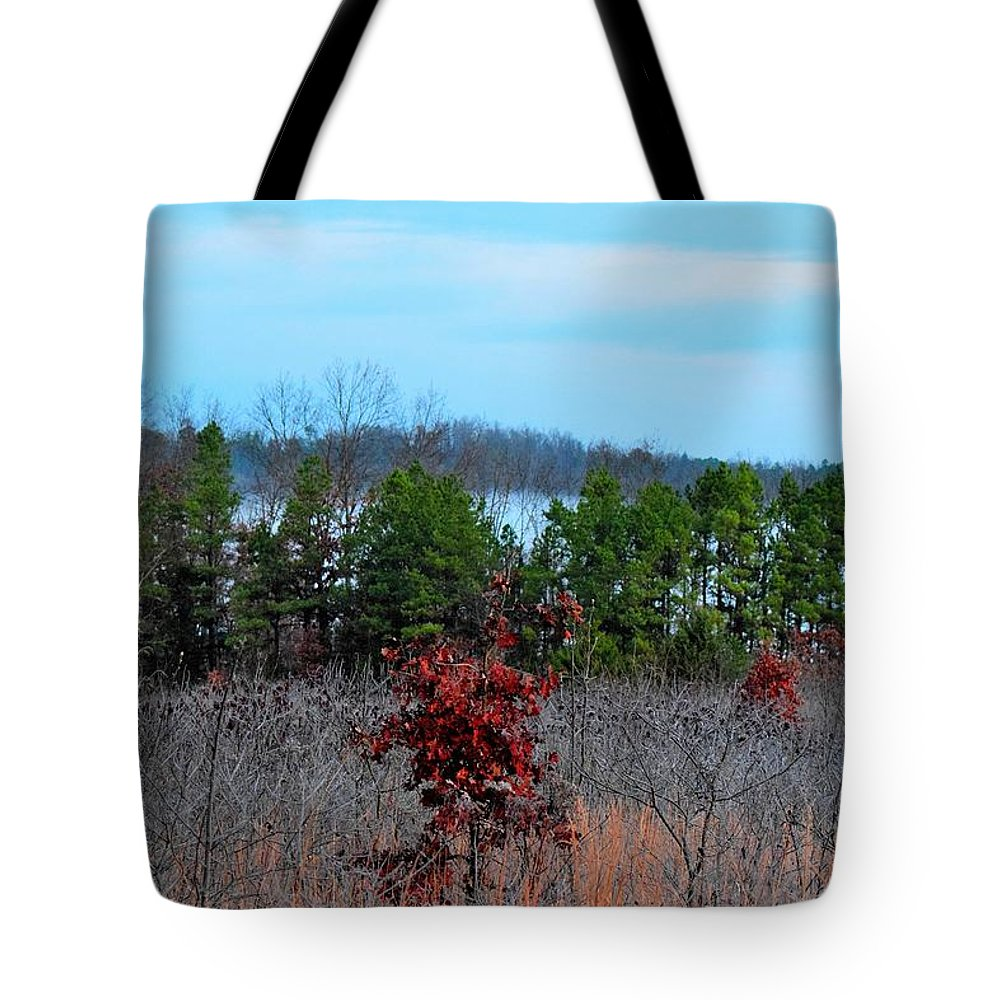 Trees Tote Bag featuring the photograph Todays Art 2499 by Lawrence Hess