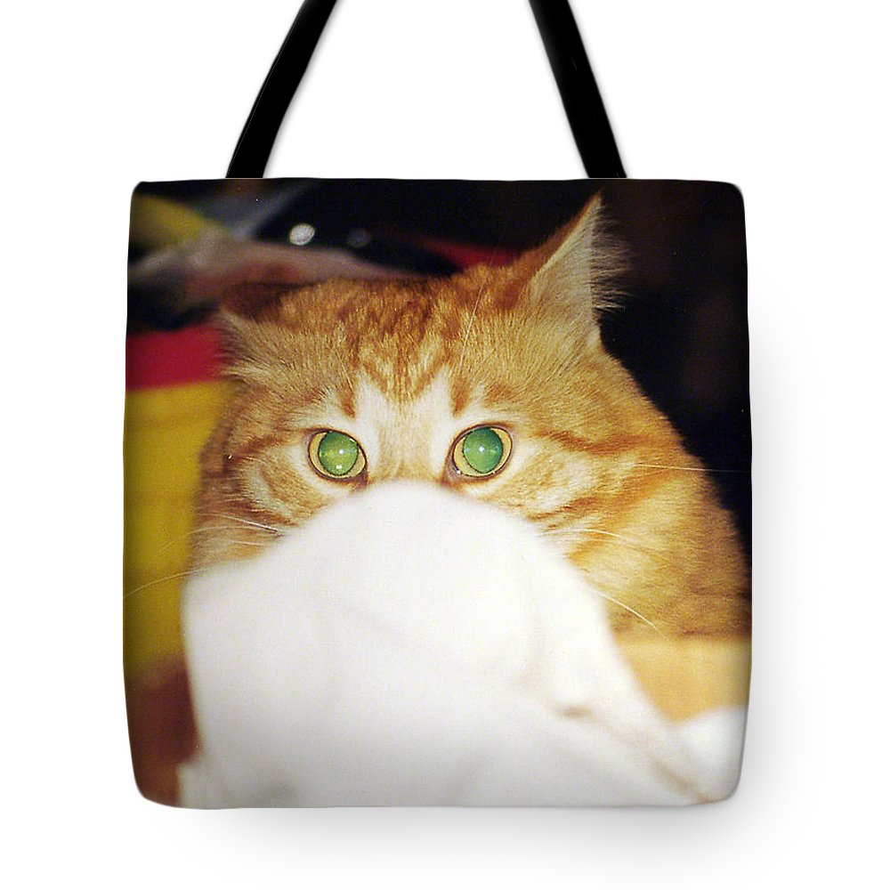 Cat Tote Bag featuring the photograph Tommy by Kenneth Albin